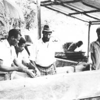 Riviere Cyrique Farmers Cooperative-1980's