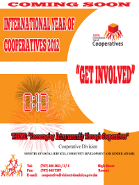 International Year of Co-operatives Ad